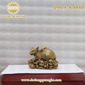 Chuột đồng ngồi trên vàng