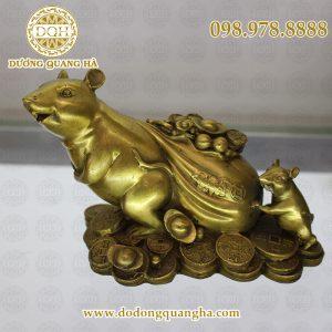 Chuột kéo bị tiền đồng vàng