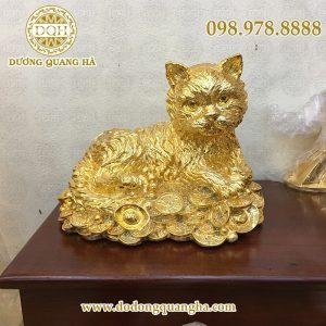 Mèo mạ vàng